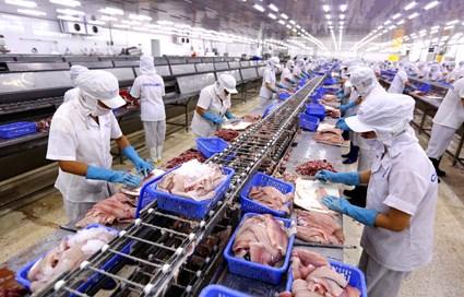 《越南与欧盟自由贸易协定》:来自劳动力市场的挑战 hinh anh 2