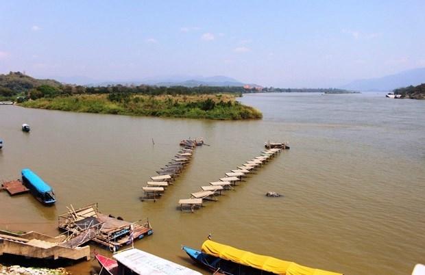 湄公河下游倡议:十年提高人力资源加强合作应对挑战 hinh anh 1