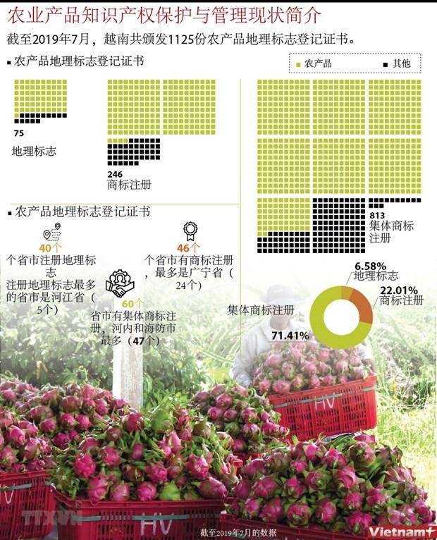 图表新闻:农业产品知识产权保护与管理现状简介 hinh anh 1