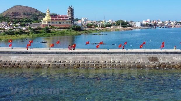 组图:2000名运动员参加在李山岛县举行的马拉松锦标赛 hinh anh 4