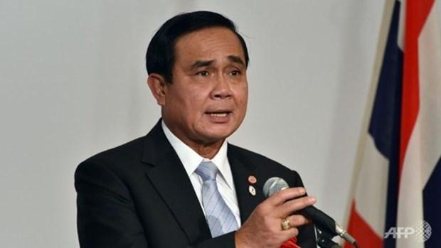 泰国为第35届东盟峰会作出各方面准备 hinh anh 1