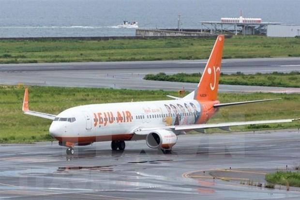 韩国济州航空开通首尔至越南富国岛的直达航线 hinh anh 1