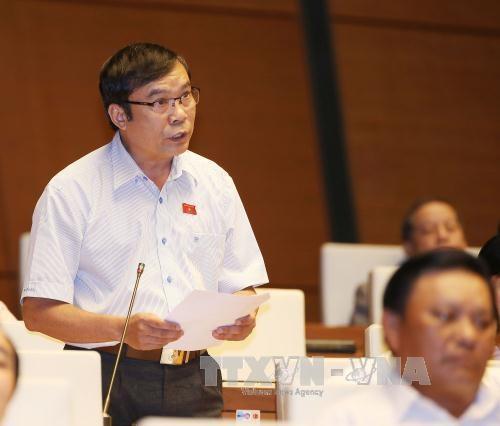 越南第十四届国会第二次会议:通过《对入境越南的外国人试行签发电子签证》决议草案 hinh anh 1