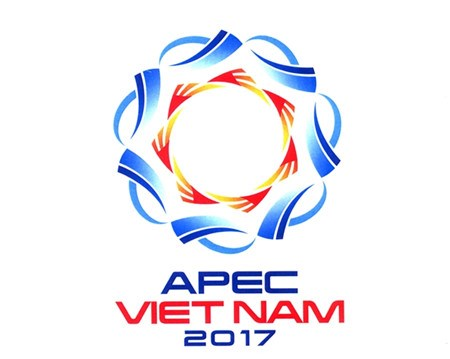 2017年亚太经合组织系列会议肯定越南的地位 hinh anh 1