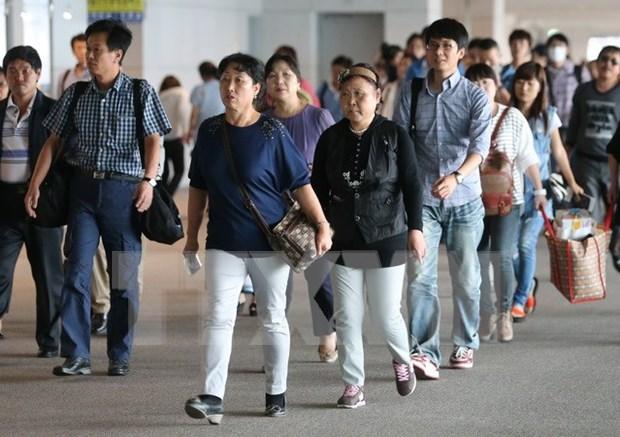 中国是越南旅游业主要客源市场 hinh anh 1
