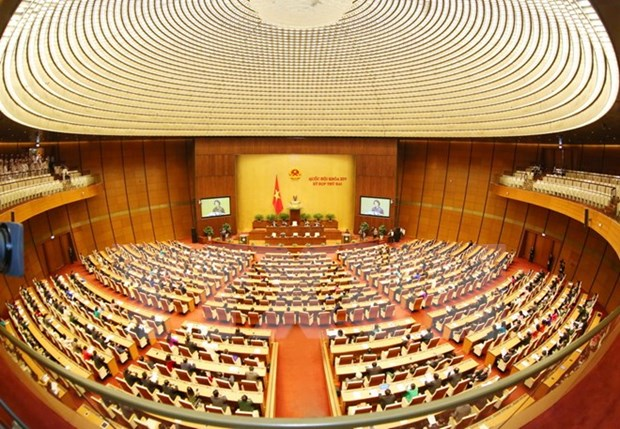 越南国会活动中的革新、团结和创新精神 hinh anh 1
