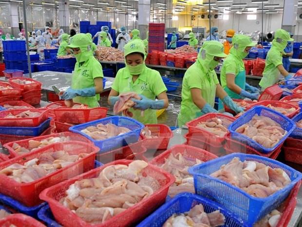 越南对中国的水产品出口额猛增 hinh anh 1