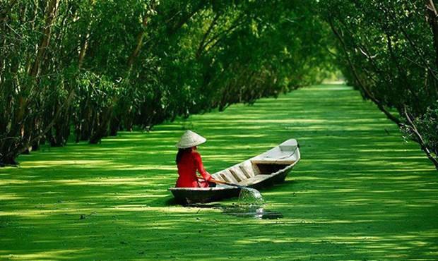 安江省着力将旅游打造成为尖端经济产业 hinh anh 1