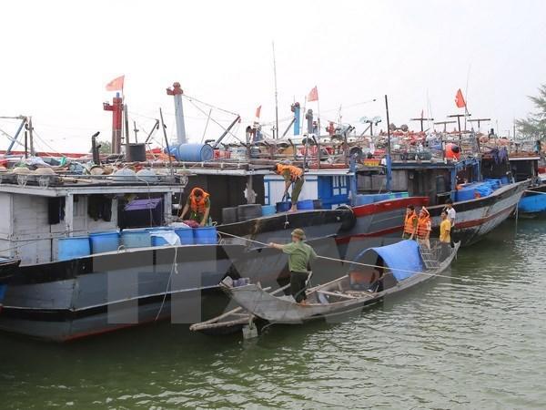 31艘平定省渔船在菲律宾部分群岛躲避9号台风 hinh anh 1