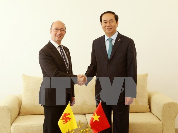 陈大光主席分别与比利时和埃及领导举行双边会晤 hinh anh 1