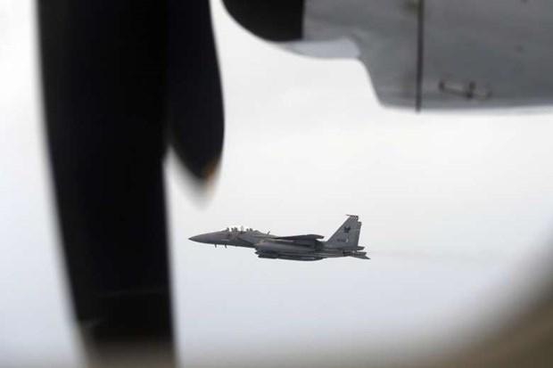 新加坡空军举行军事演习 hinh anh 1