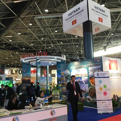 越南在2016年法国国际水处理及环保展览会上展现可持续发展决心 hinh anh 1