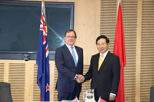 越南政府副总理兼外长范平明与新西兰外长默里·麦卡利举行会谈 hinh anh 1