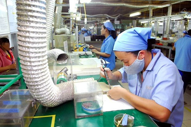 越南中小型企业应注重技术革新与创新 hinh anh 1