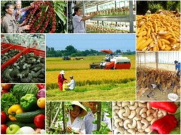 越南农业引资资金占外资总额的1.3% hinh anh 1