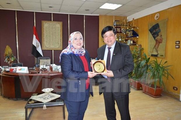越南与埃及推动广播领域的合作 hinh anh 1
