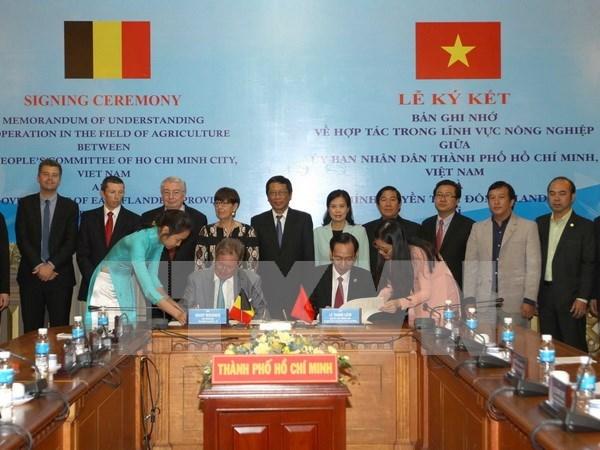 比利时布鲁塞尔法兰德斯大区代表团赴越寻找投资合作商机 hinh anh 1