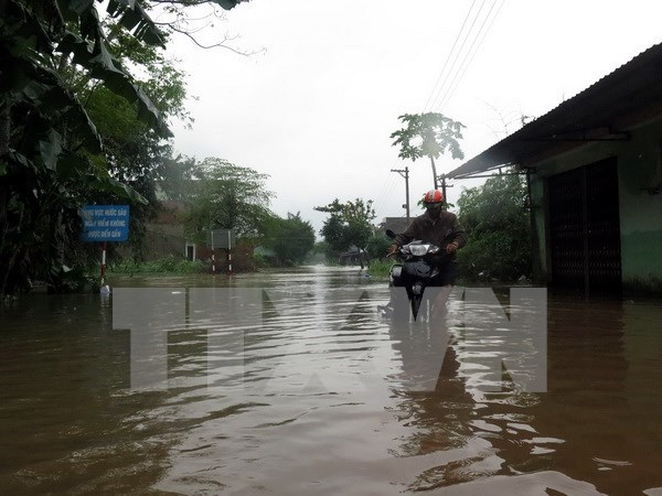 越南中部各省多措并举应对强降雨及洪灾袭击 hinh anh 1