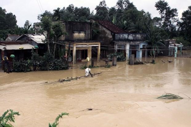 政府总理责成中部各省抓紧展开救灾和灾后恢复重建工作 hinh anh 1
