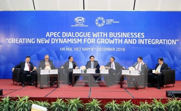 APEC领导与工商界对话会:为企业增长和对接创造新动力 hinh anh 1