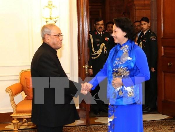 国会主席阮氏金银会见印度总统普拉纳布·慕克吉 hinh anh 1