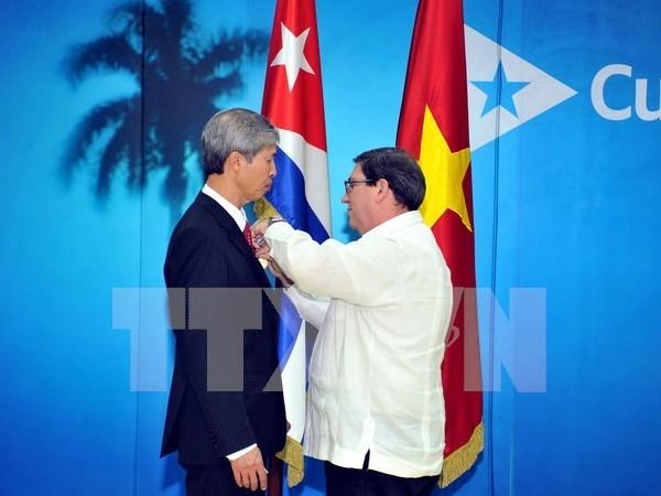越南驻古巴大使杨明被授予古巴国务委员会友谊勋章 hinh anh 1