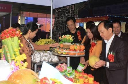 2016年北中部地区国际贸易展览会在清化省举行 hinh anh 1