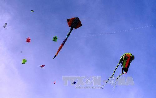 第7届国际风筝节正式落下帷幕 hinh anh 1