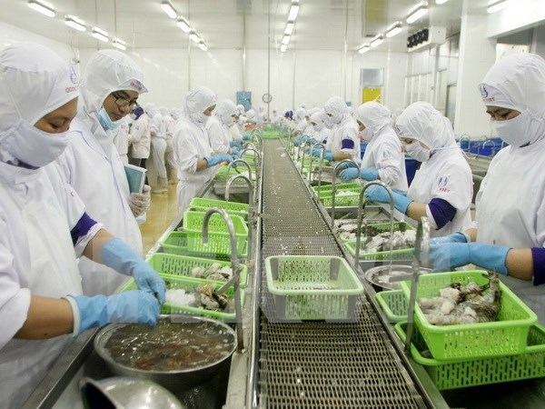 2017年金瓯省力争实现出口金额达11亿美元的目标 hinh anh 1