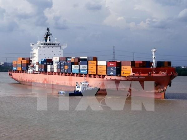 900家企业参加沿海运输航线 hinh anh 1