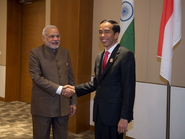 印度尼西亚与印度促进经济和航行合作 呼吁和平解决东海争端 hinh anh 1