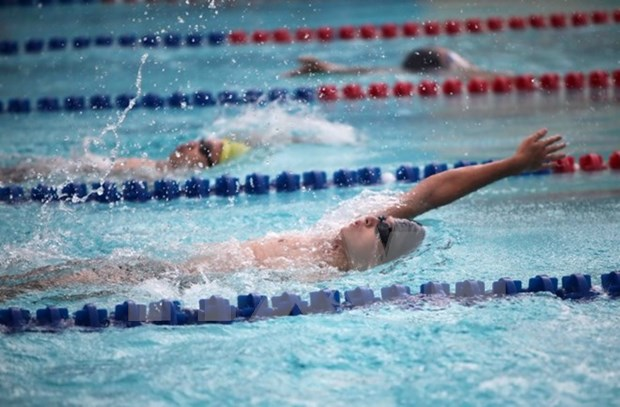 2016年东南亚各年龄组游泳锦标赛:越南队豪夺39金高居榜首 hinh anh 1