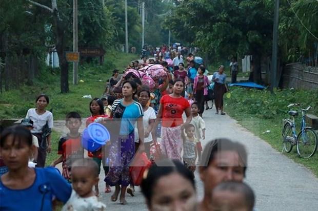 缅甸呼吁东盟就罗兴亚族问题召开紧急会议 hinh anh 1