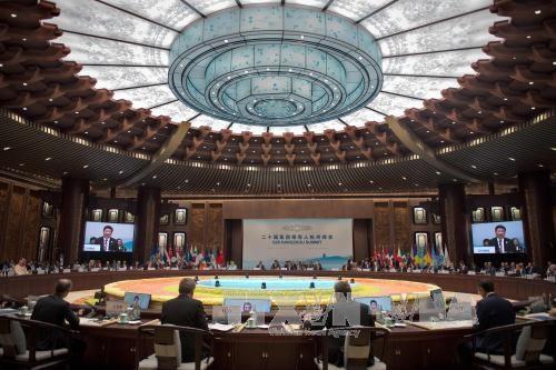 越南参加二十国集团峰会协调人会议 hinh anh 1