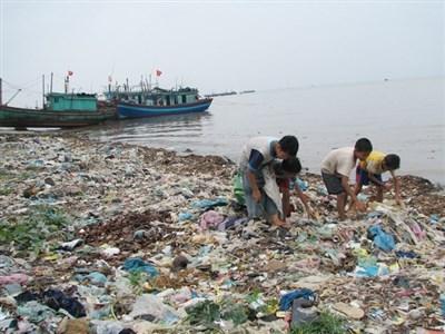 第三次越日环境政策对话在河内举行 hinh anh 1