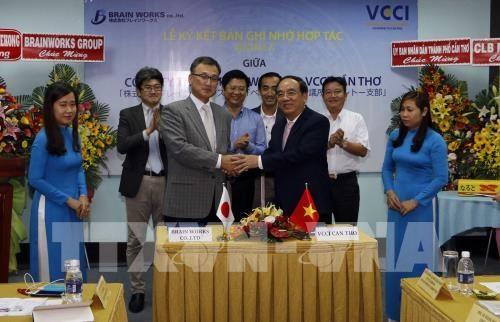越日贸易合作备忘录签署仪式在芹苴市举行 hinh anh 1