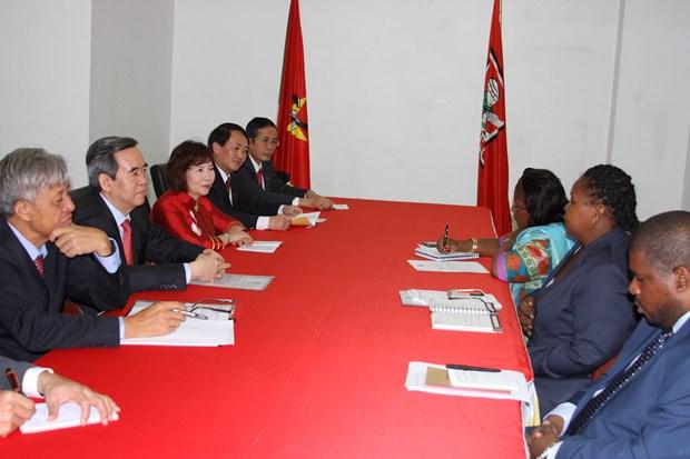 越共中央经济部部长阮文平对莫桑比克进行工作访问 hinh anh 1