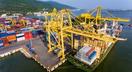 岘港港口货物吞吐量达700万吨 hinh anh 1