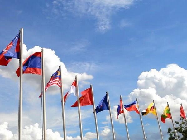 太平洋联盟加强与东盟合作关系 hinh anh 1