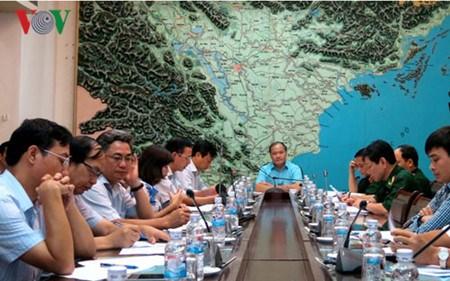 日本承诺继续帮助越南应对气候变化 hinh anh 1