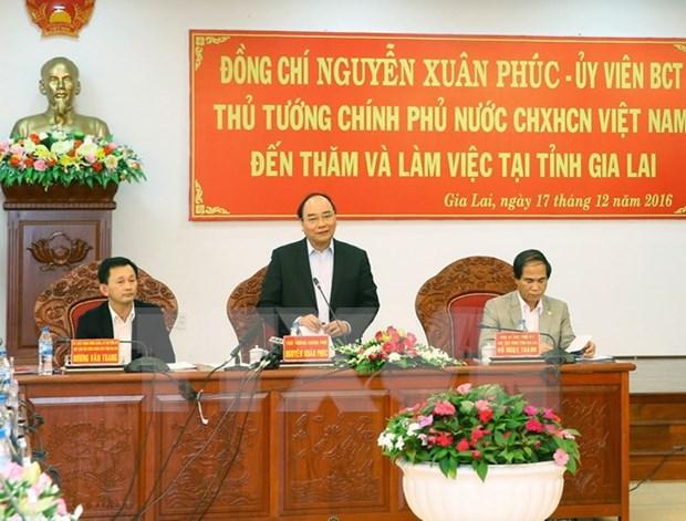 阮春福总理:嘉莱省应进一步维护与弘扬锣钲文化价值 hinh anh 1