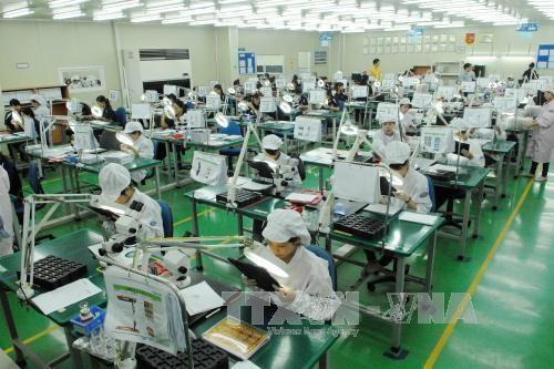 2017年越南经济发展态势继续向好 hinh anh 1