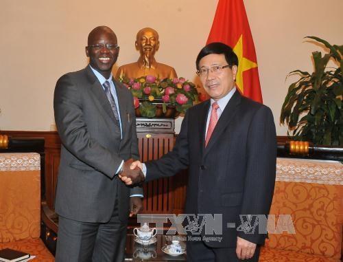 越南政府副总理兼外交部长范平明会见世行驻越南首席代表 hinh anh 1