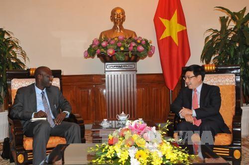 越南政府副总理兼外交部长范平明会见世行驻越南首席代表 hinh anh 2