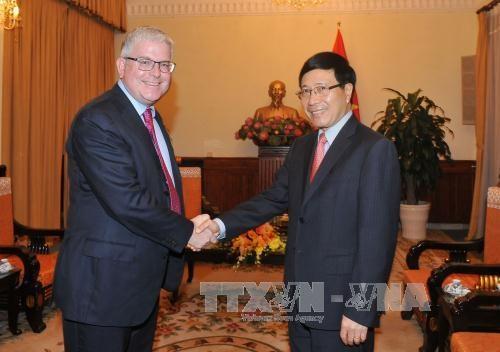 越南政府副总理兼外交部长范平明会见世行驻越南首席代表 hinh anh 3