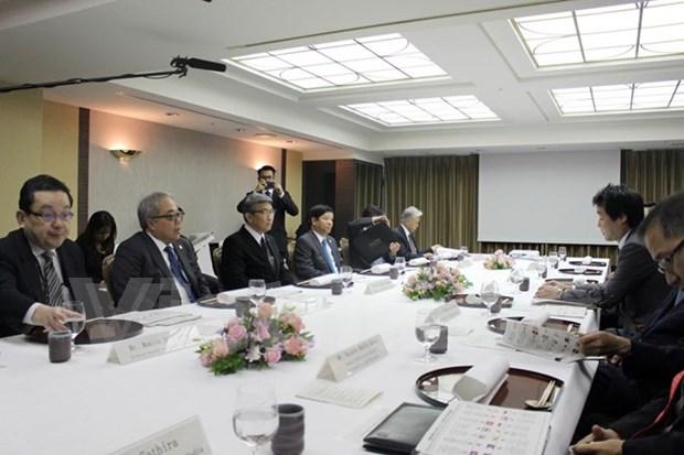 日本加强与东盟的文化交流 hinh anh 1