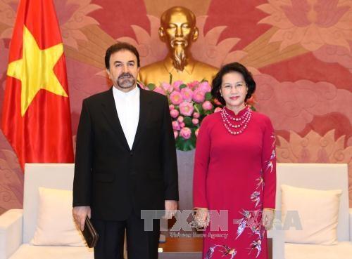国会主席阮氏金银会见韩国和伊朗驻越大使 hinh anh 2