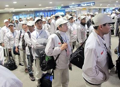 越南与日本加大劳工领域的合作力度 hinh anh 1