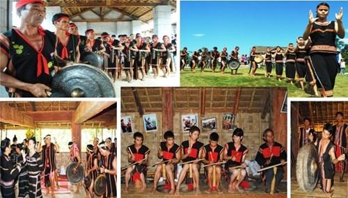 西原地区各民族文化体育旅游日将于2017年首次举行 hinh anh 1