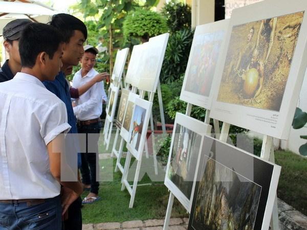 通过2016年遗产行程摄影展推介越南形象 hinh anh 1